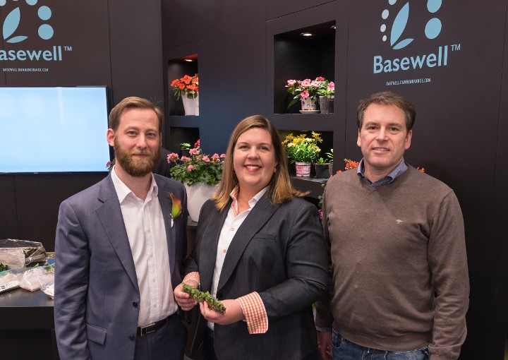 Dümmen Orange Welcomes Westhoff Annuals to Basewell™